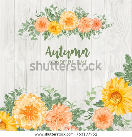 Blossom autumn chrysanthemum flowers isolated over wooden wall background. Vector illustration.