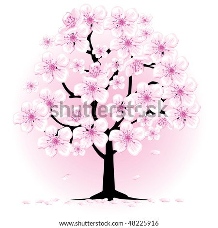 cherry tree drawing in blossom. stock vector : lossom cherry