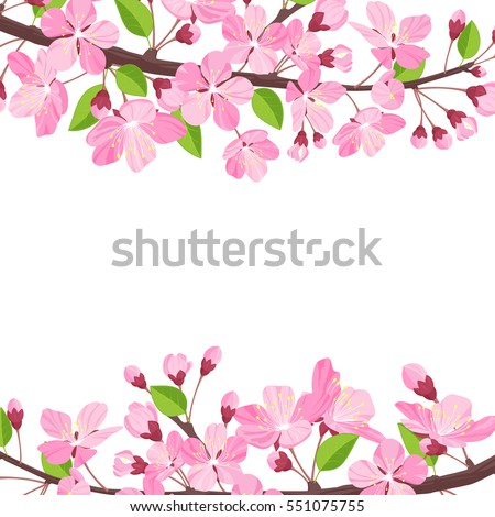 Blossoming cherry spring background. Apple tree of branch flowers and buds frame for text. Cartoon style vector illustration