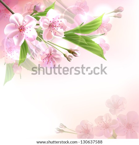 Blossoming tree branch with pink flowers  on bokeh background. Vector illustration