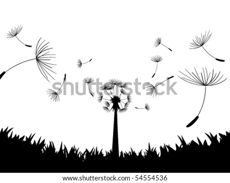 Blow Dandelion. Directly below. Vector