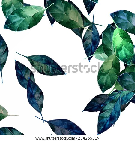 blue and green leaves