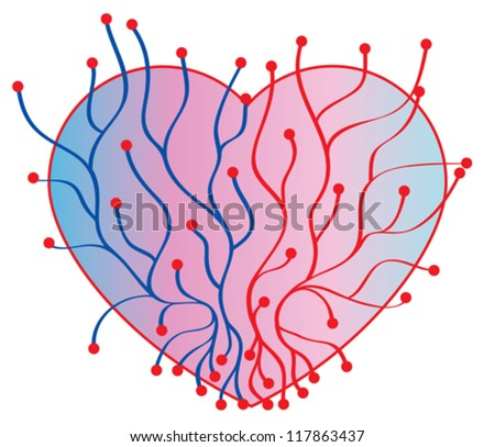 blue and pink gradient heart with veins painted on it half blue, half red, with circles at the ends, on a white background
