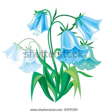 Фото как нарисовать колокольчик цветок