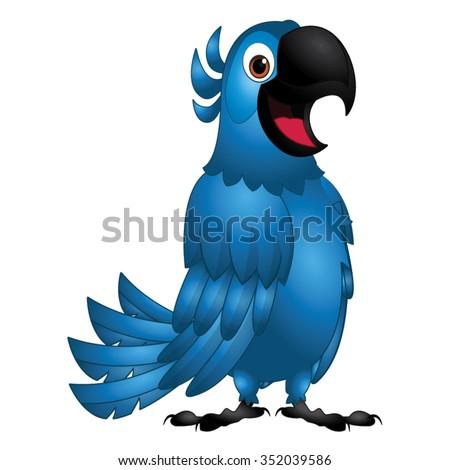 blue bird   friendly rio