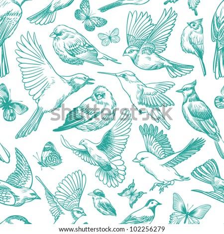 blue birds and butterflies