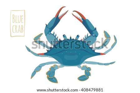 blue crab  vector cartoon