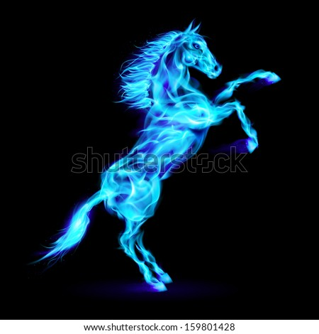 Blue fire horse rearing up. Illustration on black background. - stock vector