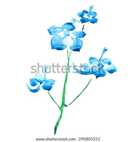 blue flower drawing watercolor