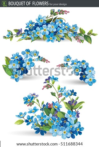 blue forget me not spring
