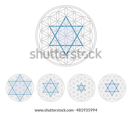 blue hexagram in flower of life