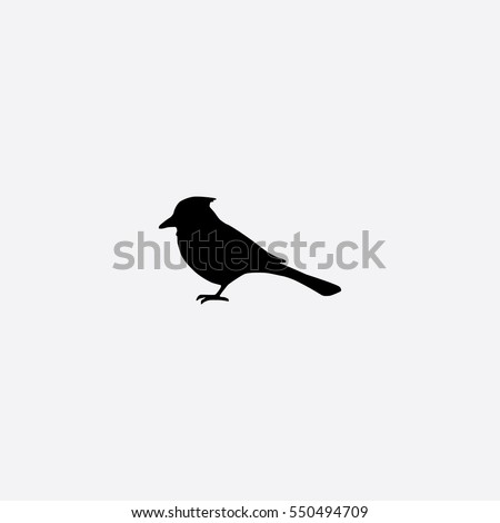 blue jay icon silhouette vector