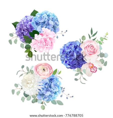 blue  pink and purple hydrangea