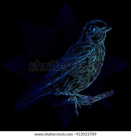 blue sialia vector