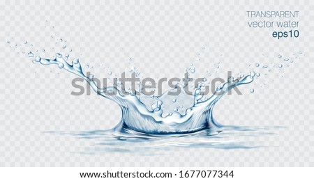 Blue transparent water splashes and drops. Realistic isolated vector illustration