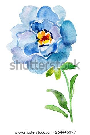 blue watercolor rose   vector