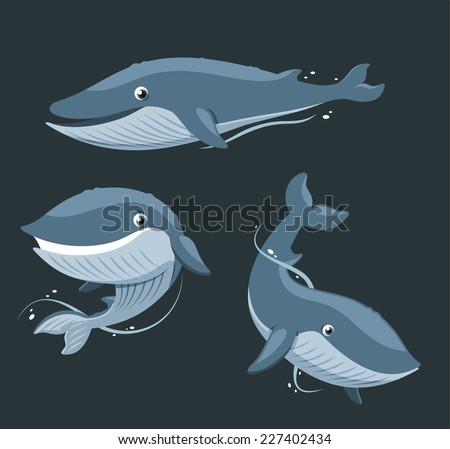 blue whale aquatic mammal set