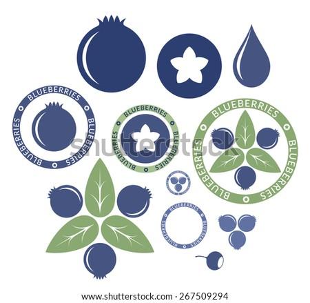 Blueberry. Set. Vector illustration