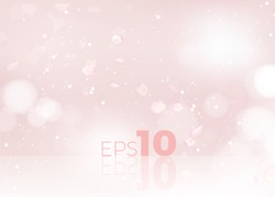 Blur Studio Spring Backdrop with pink rose petals. Abstract vector illustration with reflection