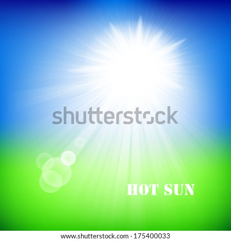 Blurry green field and blue sky with summer sun burst. Vector illustration