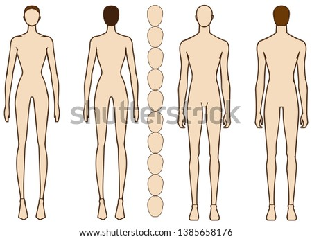 Body contours of Male and Female. Male and Female figure vector sketch, fashion croquis,  Adobe Illustrator design template, proportion, digital art. Can be used in fashion design body models.