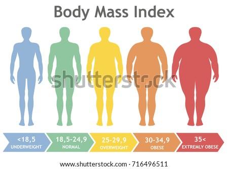 body mass index vector...