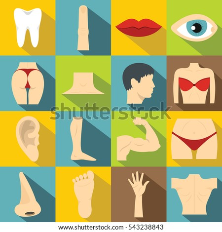 Body parts icons set. Flat illustration of 16 water body parts icons for web