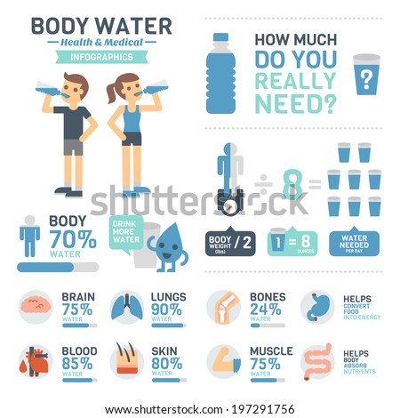 body water infographics