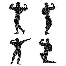 Bodybuilding, fitness and wellness theme, vector illustration
