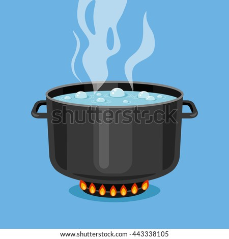 how to cook chicken on the stove with water