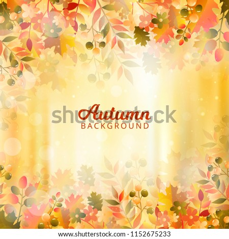 bokeh autumn background with