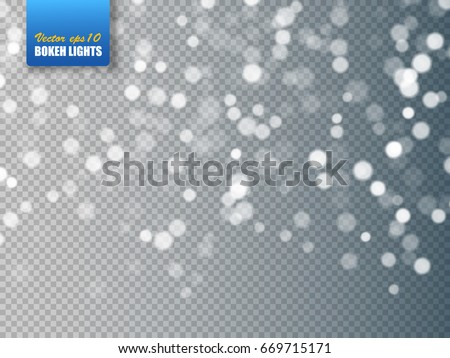 Bokeh background. Snowflakes isolated. Vector illustration.