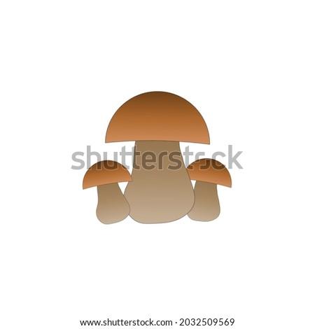 boletus mushroomsthree dark