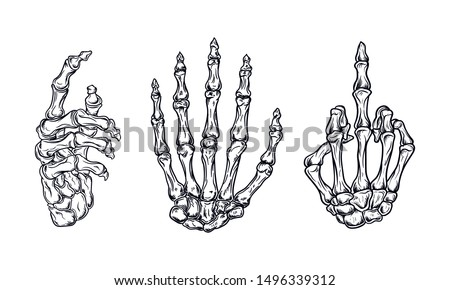 Bones hand vintage. Human skeleton bone hands. Vector skeleton hand.  (in packaging design, decoration, print, t-shirt design, etc.)