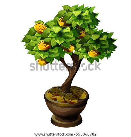 bonsai small tree with fruit of
