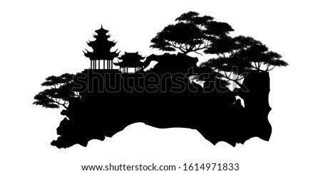 bonsai tree on the rock and