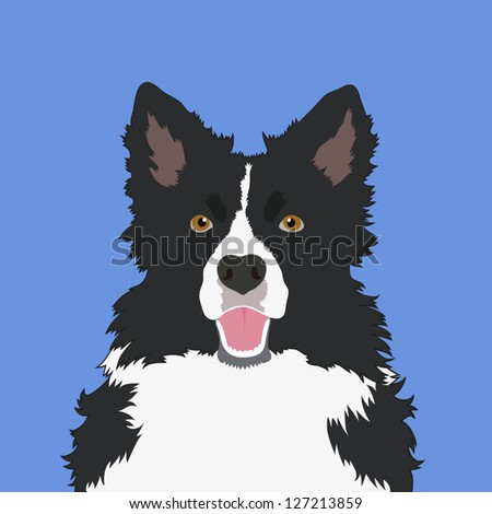 Border collie, The buddy dog