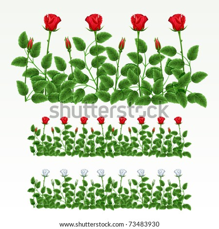 Border of red and white roses.(can be repeated and scaled in any size)