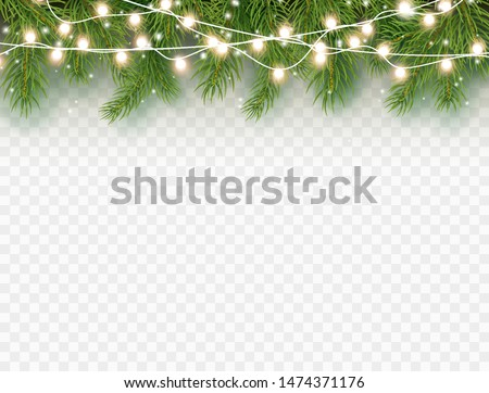 Border with green fir branches and lights isolated on transparent background. Pine, xmas evergreen plants banner. Vector Christmas tree and garland decoration border.