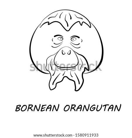Bornean orangutan face in simple black and white style, vector illustration