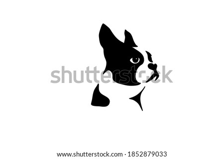 boston terrier silhouette real