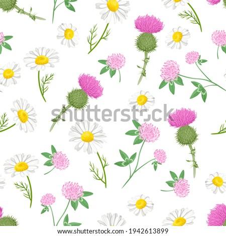 botanical background with