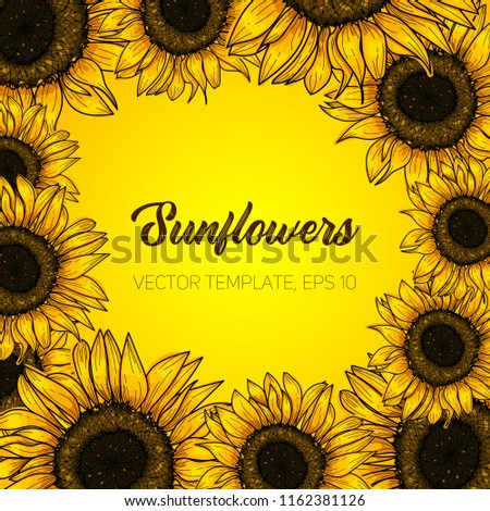 Botanical floral illustration, wild meadow sunflower, on yellow background, card template, for book, cover, banner. Hand painted flowers. Vector, eps 10