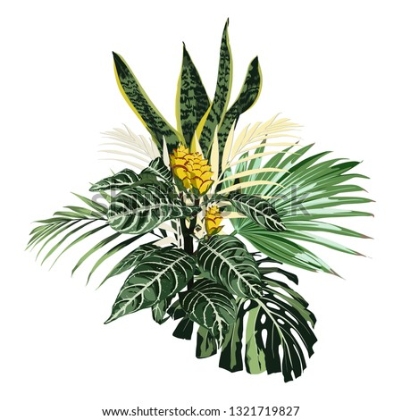 Botanical illustration, beautiful tropical flowers bouquet, sansevieria, palm leaves, exotic yellow plants, floral clip art isolated on white background.