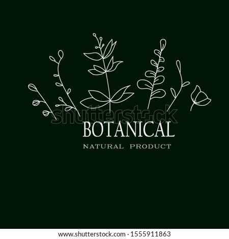 Botanical Logo. Botanical Vektor. illustration. Green background. Minimalist botanical