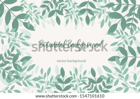Botanical vector background. Botanical frame
