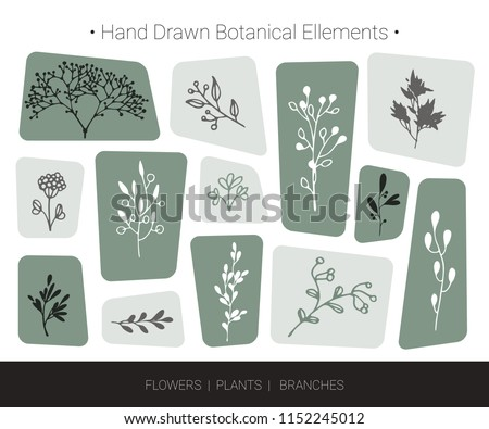 Botanical vector design elements. Hand drawn isolated silhouettes of flowers, weeds, herbs, tree branches. Logo design, organic branding, wedding invitation decor, fashion textile and floral prints.