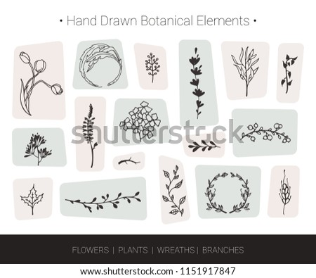 Botanical vector design elements. Hand drawn vector silhouettes of flowers, herbs, wreaths, tree branches. Logo design, wedding invitation, greeting card decor, fashion textile and floral prints.