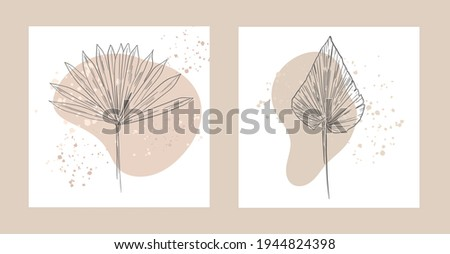 Botanical wall art. Vector Dried Sun Fan Palms. Small Pampas Grass. Bohemian cream flowers. Dry hydrangea. Dried flower bunches, BLUSH Dry preserved