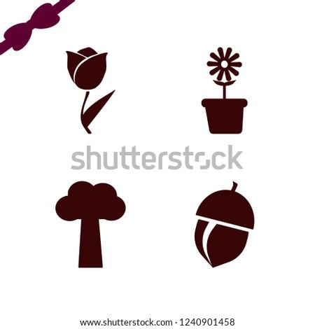 botany icon. botany vector icons set flower pot, acorn, tree and tulip